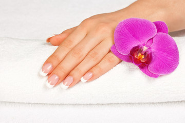 Woman's hand with perfect french manicure