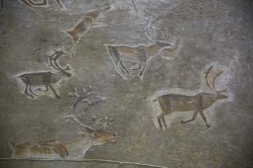 Drawings on the skins of deer