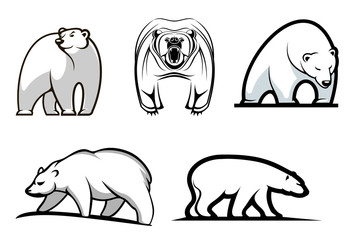 Set of cartoon polar bears