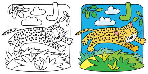 Little cheetah or jaguar coloring book. Alphabet J