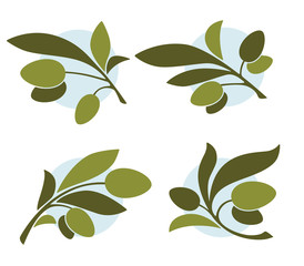 green olives, vector collection of signs, symbols and icons