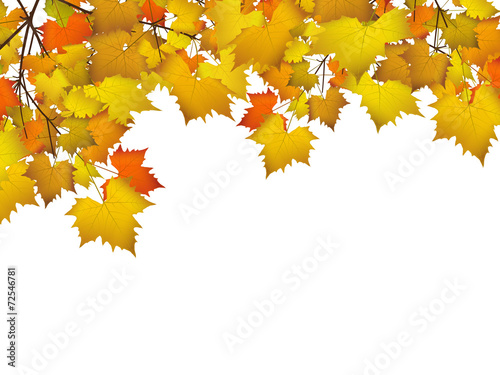 bl tter herbst hintergrund farben leafs autumn. Black Bedroom Furniture Sets. Home Design Ideas