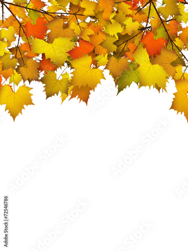 bl tter herbst hintergrund farben leafs autumn background stockfotos und lizenzfreie. Black Bedroom Furniture Sets. Home Design Ideas