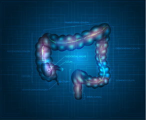 Human colon abstract blue background