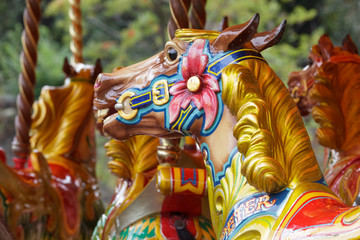 Wooden horse on a carousel