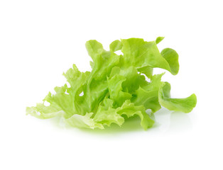 Green leaves lettuce isolated on white background