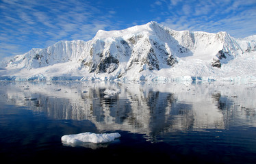 Fototapete - ice flee in antarctica