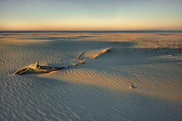 Morze,  plaża o wschodzie słońca