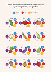 Nutrition value of various vegetables, infographics, vector