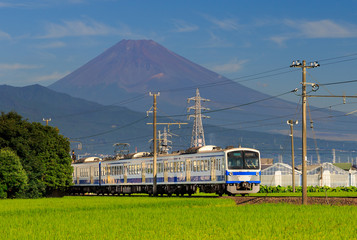 Fototapete - View of mountain Fuji with a train passing through green field