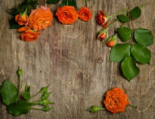 Roses with leaves frame  on wooden background.