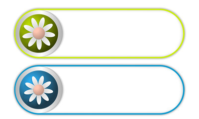 two vector buttons with flower