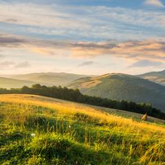 field on hillside near village