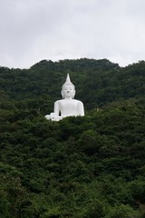giant white image of Buddha with green mountain 4
