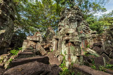 Fotomurales - Ancient ruins and tree roots, Ta Prohm temple, Angkor, Cambodia