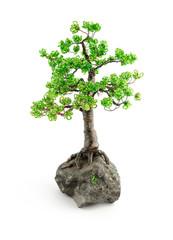 beads bonsai isolated on white