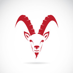 Vector image of goat (chamois)