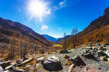 Beautiful typical autumn landscape 19