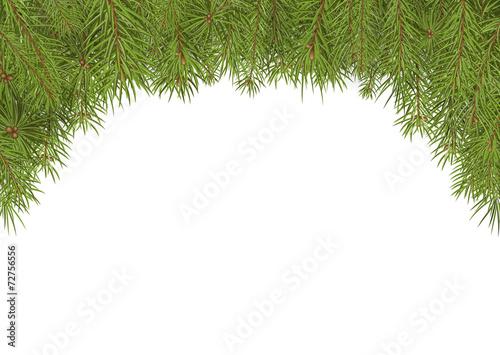tannenzweige weihnachten hintergrund vorlage textfeld wei stockfotos und lizenzfreie. Black Bedroom Furniture Sets. Home Design Ideas