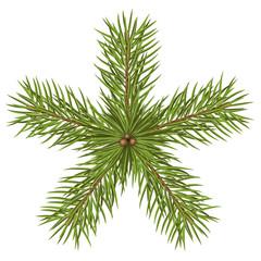 Weihnachtsstern, Tannenzweige, Stern, Weihnachten, Tannengrün