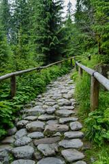 Tatra footpath