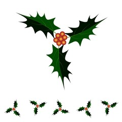 A Beautiful Christmas Holly Twig on White Background