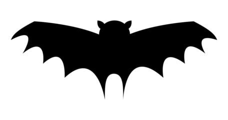 Bat Bird Flying Shape