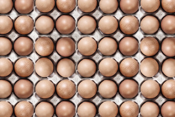 Eggs in a carton closeup view background