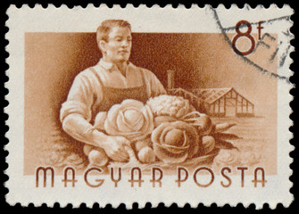 Stamp printed in Hungary, shows Gardener
