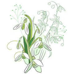 Snowdrops and spring flowers