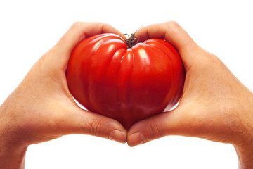 Love tomato Heart in hands on white background.
