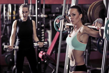 Two sporty woman workout in the gym