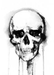 skull .watercolor illustration
