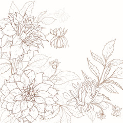 Dahlia background 1