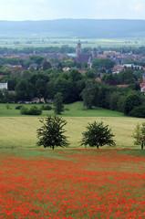 Klatschmohnfeld und die Stadt Einbeck