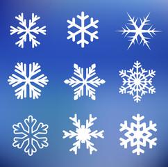 Snow flake set vector