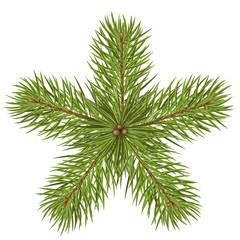 Tannenzweige, Weihnachtsstern, abstrakt, Stern, Star, fir branch