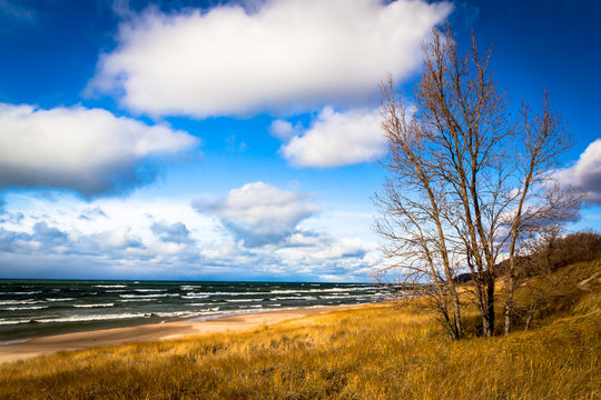 Autumn at Lake Michigan. Saugatuck Dunes State Park Beach. Lakeshore background with copy space.