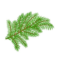 Spruce branch Christmas tree vector illustration