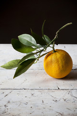 one orange freshly harvested with branch and leaves on table