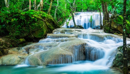 Wall Mural - Waterfall in tropical forest