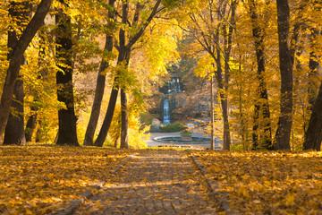 Autumn park paved road