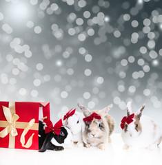 Christmas Eastern