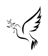 Dove Bird Peace