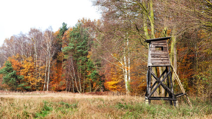 Photo sur Plexiglas Chasse Panoramic view of a hunting pulpit in autumn.