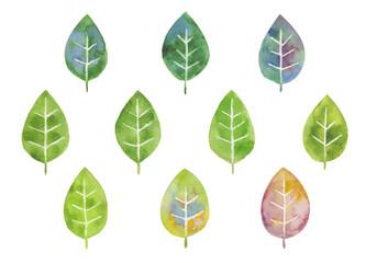いろいろな葉っぱ 水彩イラスト
