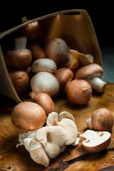 Fresh mushrooms on a wooden board