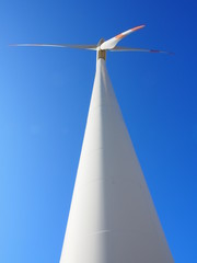 Pala eolica portrait