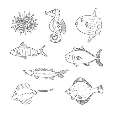 Set of monochrome vector doodle fishes and sea dwellers