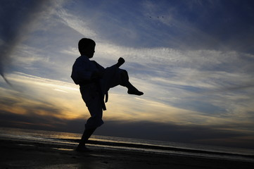 Silhouette of karate fighter
